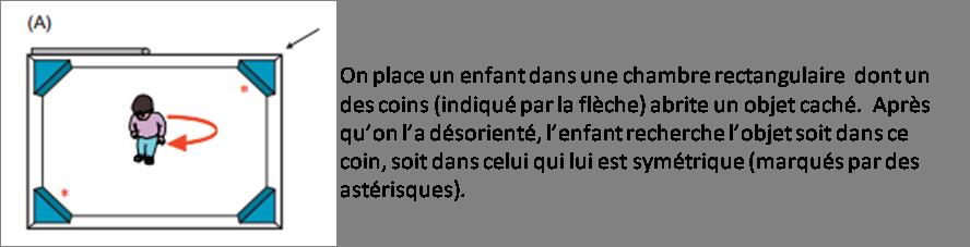 orientation rectangle