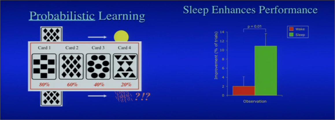 A chaque carte est associée la probabilité du temps qu'il fera demain (à gauche). Les participants améliorent leur performance de 10% au jeu de la prédiction météo après une nuit de sommeil. Source: