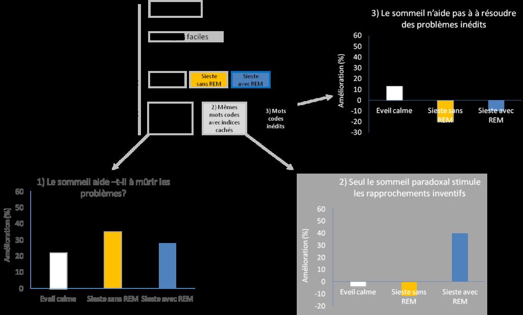 Le protocole d'expérience (en haut à gauche). Graphique 1 (en bas à gauche): pour les étudiants qui n'ont pas fait le jeu des analogies, quelques heures d'incubation leur permet de trouver une partie des mots-codes non découverts le matin, qu'ils aient ou non fait une sieste. Graphique 2 (en bas à droite): Seuls les étudiants ayant effectué une sieste avec sommeil paradoxal résolvent certains mots-codes du matin, en s'inspirant des indices fournis par le jeu des analogies. Graphique 3 (en haut à droite): lorsqu'on soumet aux étudiants de nouveaux mots-code l'après-midi, ils ne sont pas spécialement plus performants que le matin, même s'ils ont fait une sieste entre temps. Source: Cai, Mednick & al (PNAS, 2009)